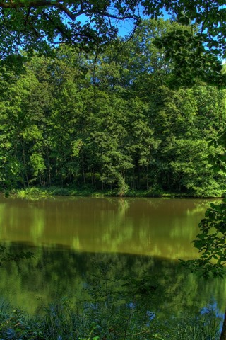 iPhone Wallpaper Germany, river, trees, green, nature scenery