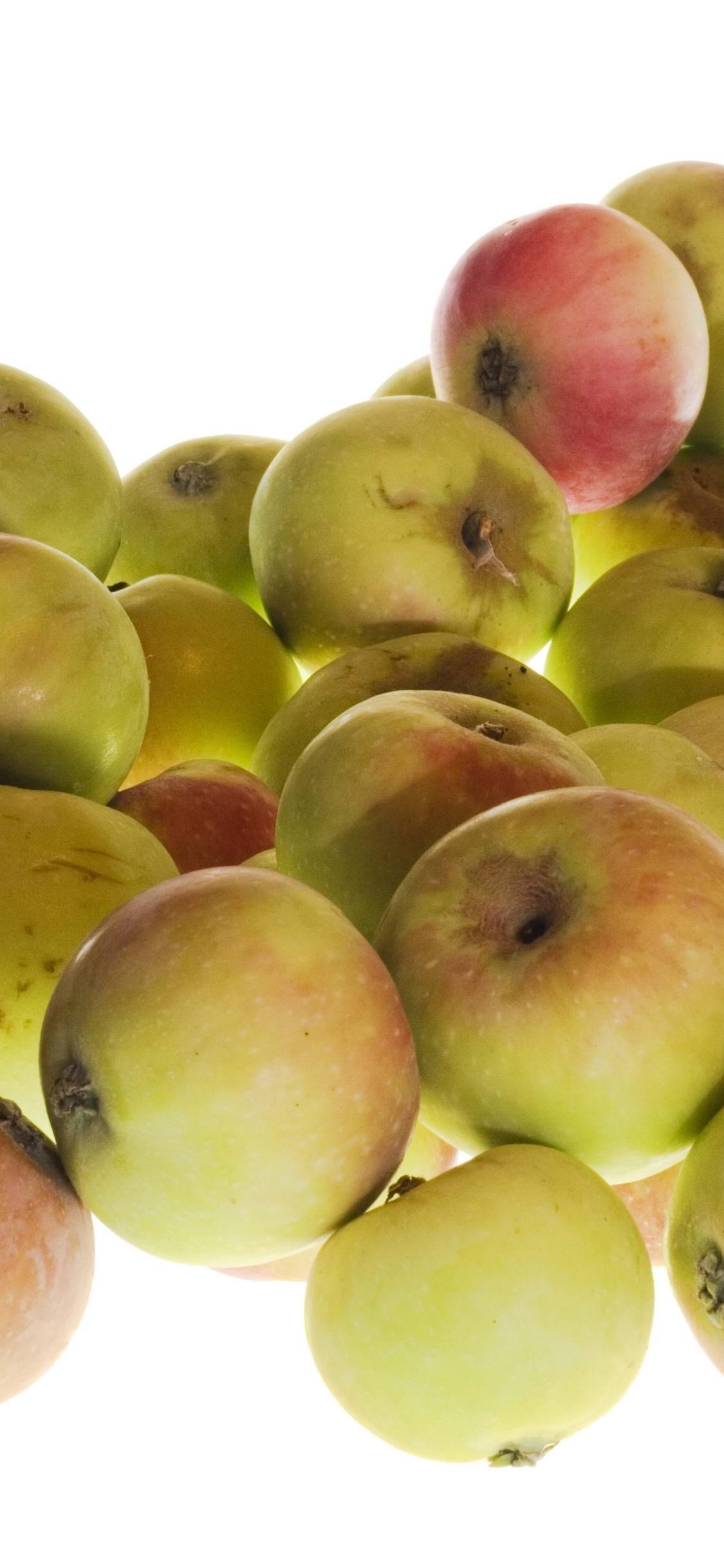 いくつかのリンゴ 白い背景 フルーツ 1125x2436 Iphone 11 Pro Xs X 壁紙 背景 画像