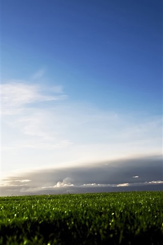 iPhone Wallpaper Green field, clouds, sky
