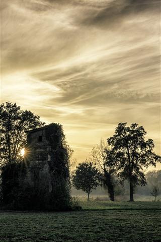 iPhone Wallpaper Italy, trees, field, hut, mist, sun rays, morning