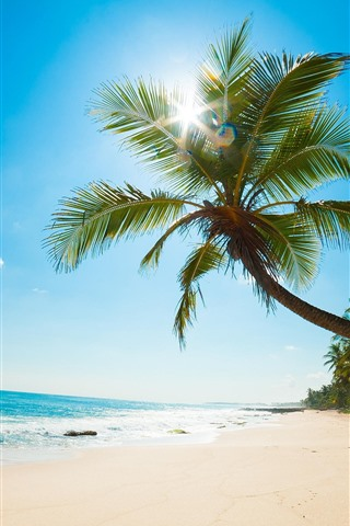 iPhone Wallpaper Palm tree, beach, sea, sun rays, tropical, blue sky