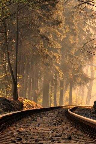 iPhone Wallpaper Railroad, track, trees, sun rays