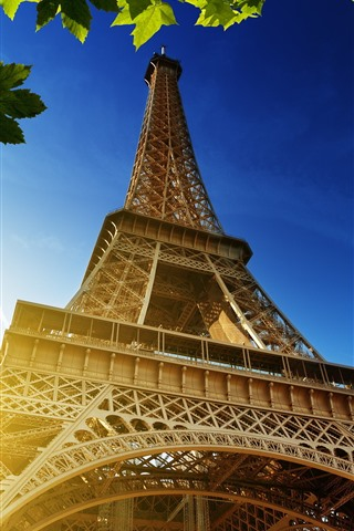 iPhone Wallpaper Eiffel Tower, green maple leaves, sun rays, France