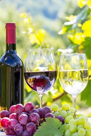 iPhone Wallpaper Red and green grapes, wine, bottle, cups, sunshine
