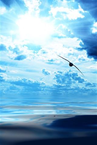 iPhone Wallpaper Blue sky, clouds, sun rays, bird flight