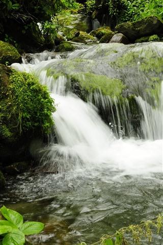 iPhone Wallpaper Georgia Park, waterfalls, stones, moss