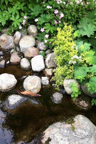 iPhone Papéis de Parede Poça, água, pedras, folhas verdes, flores