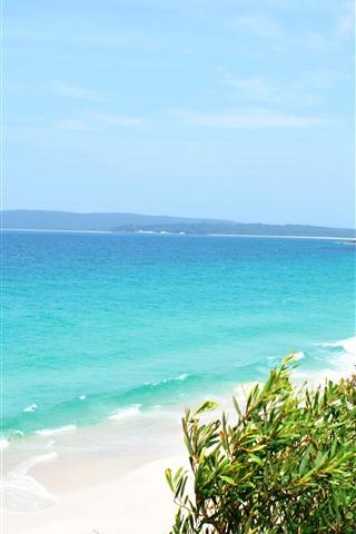 iPhone Wallpaper Tropical, beach, plants, blue sea