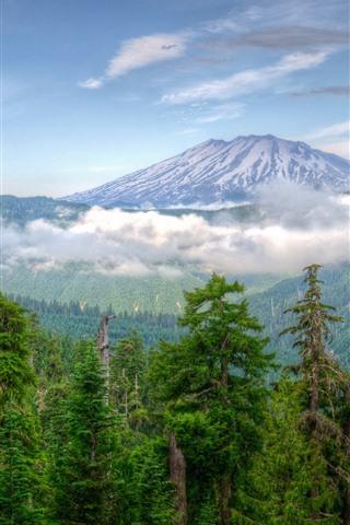 iPhone Wallpaper Washington, USA, mountains, trees, snow, clouds, nature