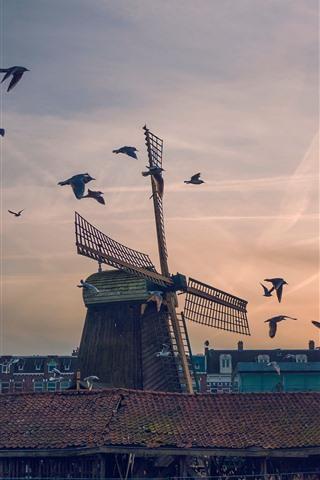 iPhone Wallpaper Windmill, birds, sunset, city