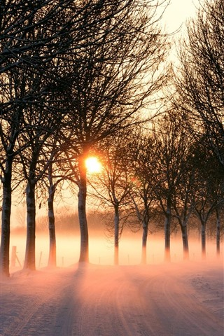 iPhone Wallpaper Winter, road, snow, trees, sun rays, morning, fog