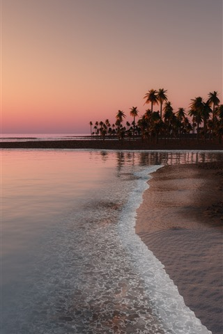 iPhone Wallpaper Beach, coast, sea, palm trees, sunset, tropical