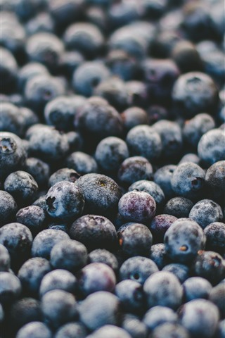 iPhone Wallpaper Berries, fruit, many blueberries, water droplets