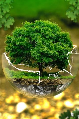iPhoneの壁紙 ガラス玉、一本の木、クリエイティブなデザイン写真