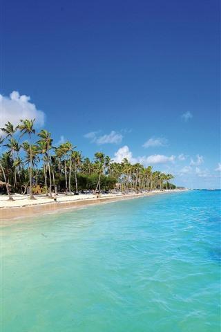iPhone Wallpaper Maldives, tropical, beach, palm trees, blue sea