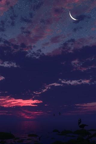 iPhone Wallpaper Sea, night, palm trees, starry, moon