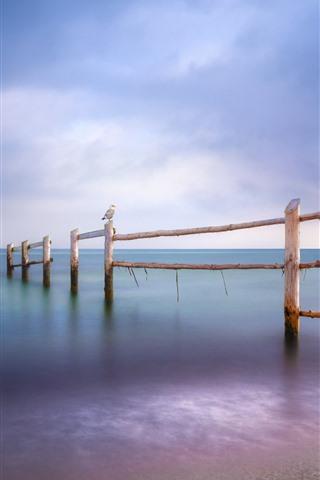 iPhone Wallpaper Baltic Sea, seagulls, fence, beach, dusk