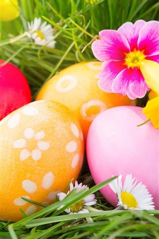 iPhone Обои Красочные пасхальные яйца, цветы, трава
