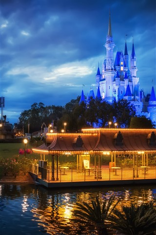 iPhone Wallpaper Disneyland, castle, night, lights, gazebo, clouds