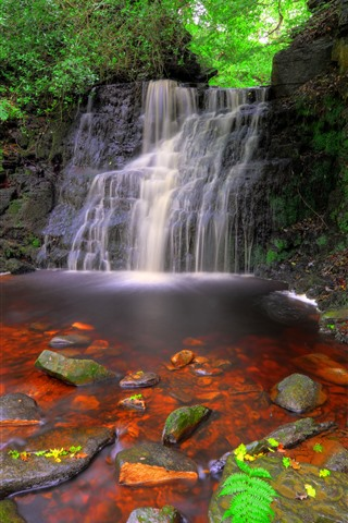 iPhone Wallpaper England, waterfalls, rocks, plants
