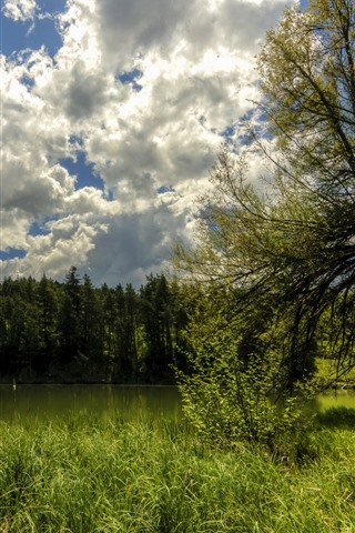 iPhone Hintergrundbilder Frankreich, Bäume, Grün, Teich, Wolken, Himmel, Sommer