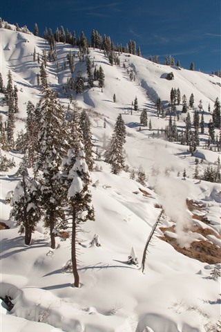 iPhone Wallpaper Lassen Volcanic National Park, trees, snow, winter, slope, USA