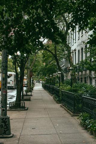 iPhone Wallpaper New York, street, trees, houses, cars, USA