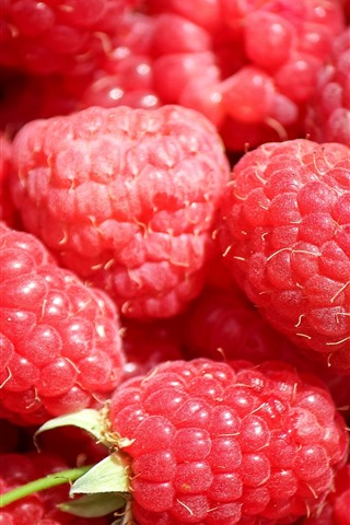 iPhone Wallpaper Red raspberry close-up, some berries