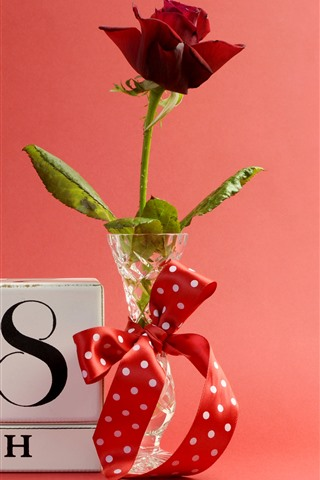 iPhone Fond d'écran Rose rouge, 8 mars, vase, ruban