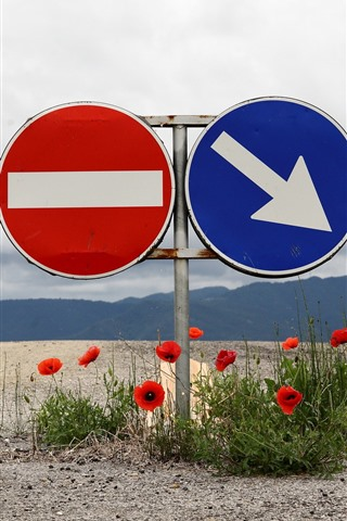 iPhone Wallpaper Road sign, red poppy flowers