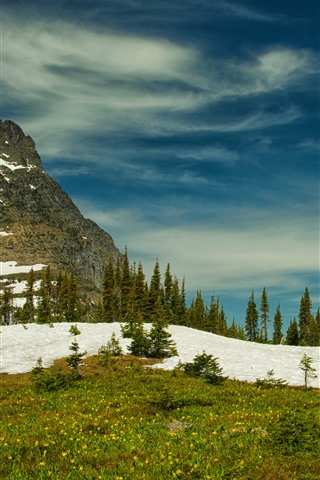 iPhone Wallpaper Rocky mountains, Glacier National Park, trees, snow