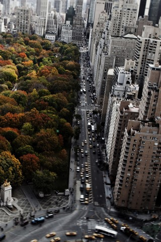 iPhone Wallpaper New York, park, trees, city, skyscrapers, road, cars, autumn