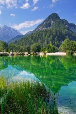 iPhone Обои Словения, озеро, Юлийские Альпы, деревья, горы