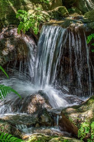 iPhone Wallpaper Waterfall, stream, stones, fern leaves