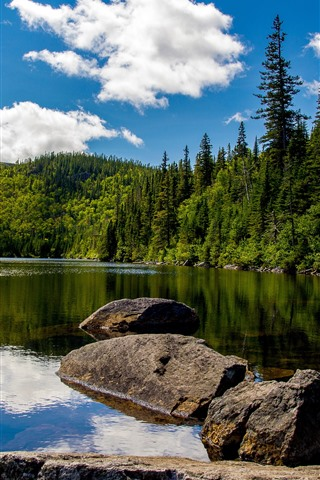 iPhone Wallpaper Canada, sunny, lake, trees, stones, blue sky, white clouds
