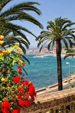 iPhone Wallpaper France, Menton, flowers, palm trees, road, coast