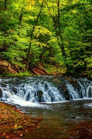 iPhone Wallpaper Trees, forest, waterfall, green, creek