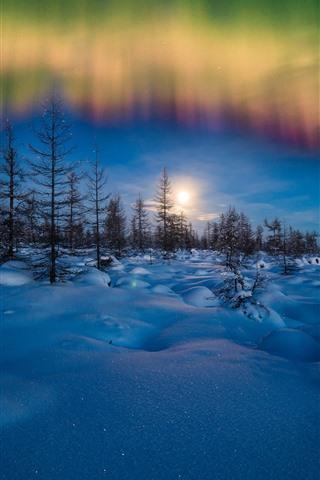 iPhone Обои Северное сияние, зима, снег, деревья, вечер, звезды