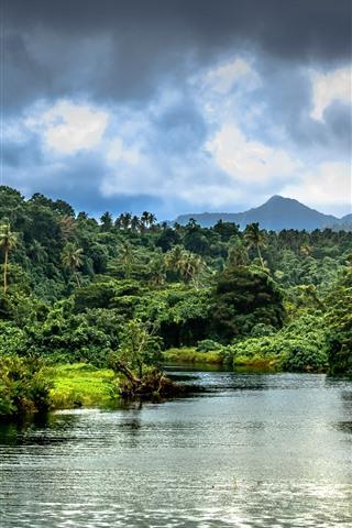 iPhone Wallpaper River, palm trees, jungle, bushes, mountains, tropical, Samoa