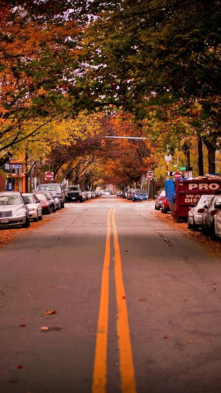 Road, trees, cars, city, autumn, USA 21x21 iPhone 21/21/21/21S ...