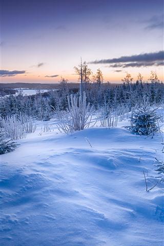 iPhone Fond d'écran Hiver, neige, arbres, herbe, rivière, nuages, crépuscule