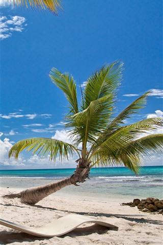 iPhone Обои Пляж, пальмы, солнечные лучи, море, голубое небо, тропический