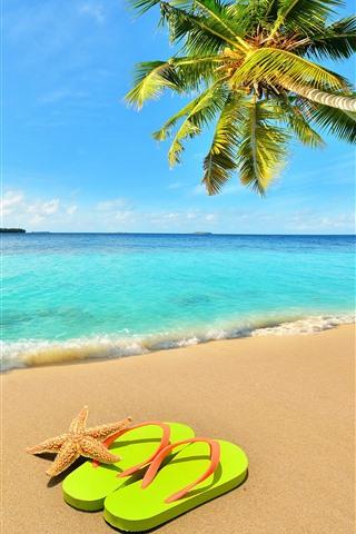 iPhone Wallpaper Palm tree, beach, sea, waves, starfish, flip flop, blue sky