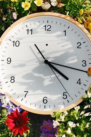 iPhone Обои Часы и цветы, время