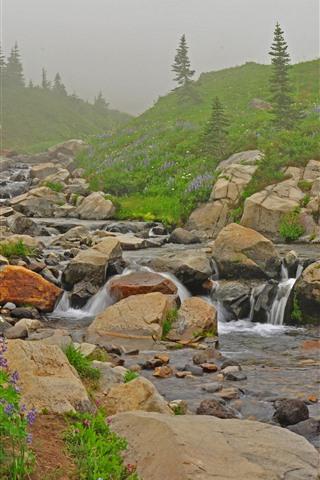 iPhone Wallpaper Flowers, slope, stream, stones, fog