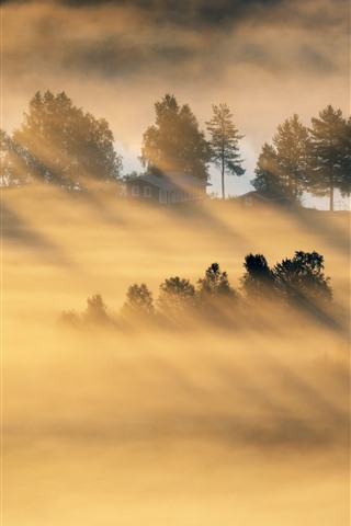 iPhone Wallpaper Morning, countryside, sun rays, fog, house, fields