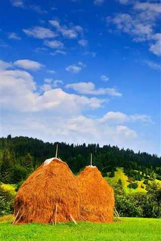 iPhone Wallpaper Romania, haystack, trees, field, hills, blue sky, clouds