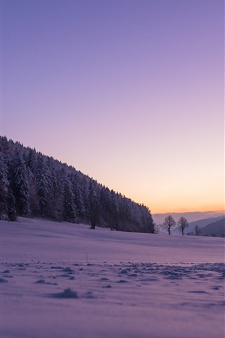 iPhone Wallpaper Switzerland, snow, winter, trees, forest, purple