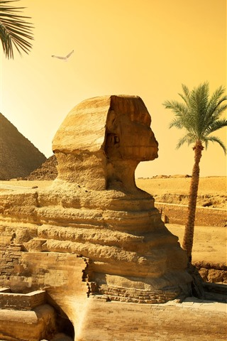 iPhone Fond d'écran Egypte, Caire, Sphinx, Pyramide, Désert, Palmiers