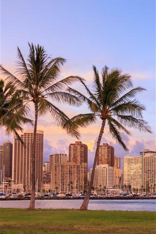 iPhone Hintergrundbilder Hawaii, Palmen, Wolkenkratzer, Stadt, Bucht, Abenddämmerung